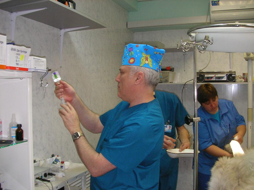 Ветеринар подготовка к операции