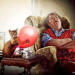 «Бабушкина кошка» – истоки проблемы
