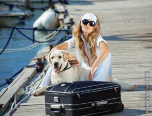 15 правил техники «животной» безопасности в летний сезон